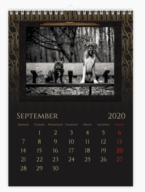 Pampered Pets Calendar example